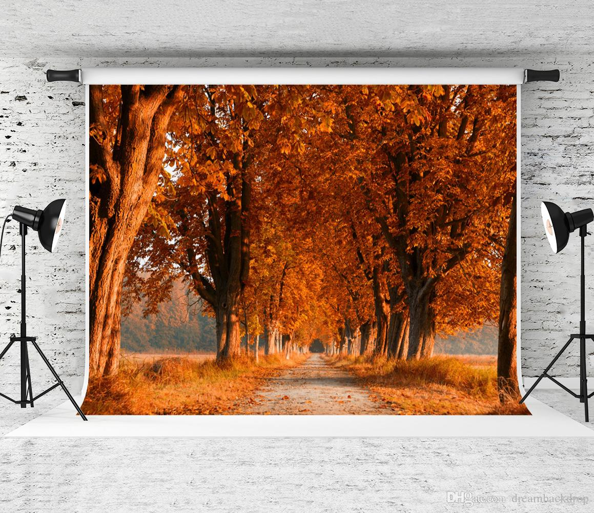Dream 7x5ft Autumn Outdoor Scenery Photography Backdrop Yellow Tree Leaves Photo Booth Background for Photographer Fall Shoot Studio Prop
