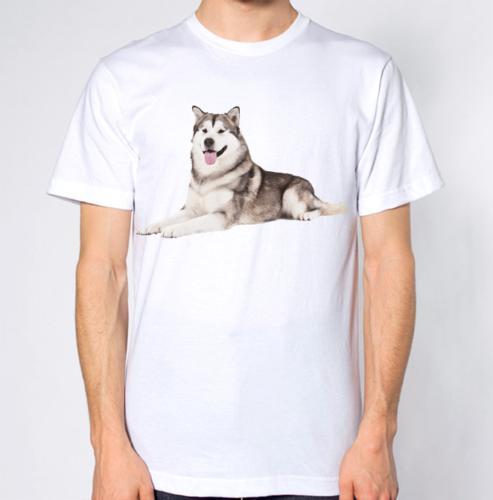Compre Husky Siberiano T Camisa Do Cão Top Engraçado Frete Grátis Unisex  Casuais De Clothing dealss 1418025215b20