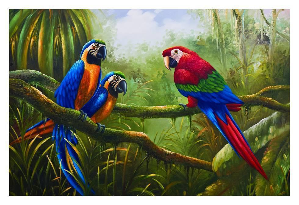 Free Shipping Wholesale HANDCRAFTS Art OIL PAINTING On Canvas Animals The beautiful parrot Multi Szies