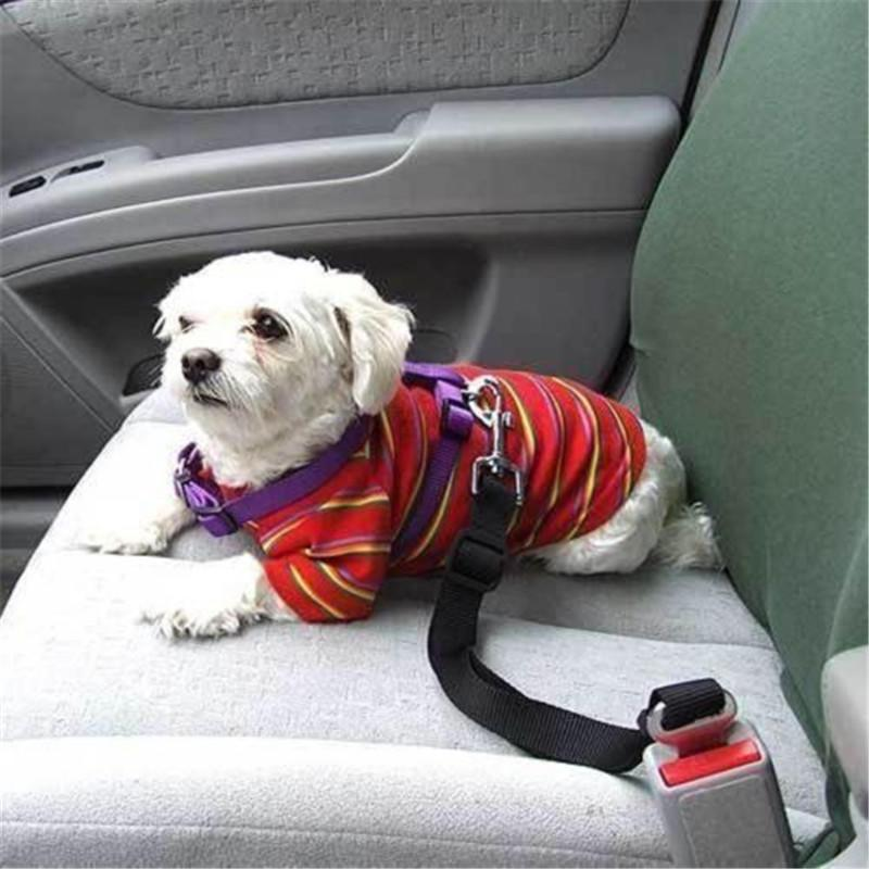 Pet Seat Belt >> 2019 Adjustable Leash For Dogs Car Seat Belt Nylon Dog Collars