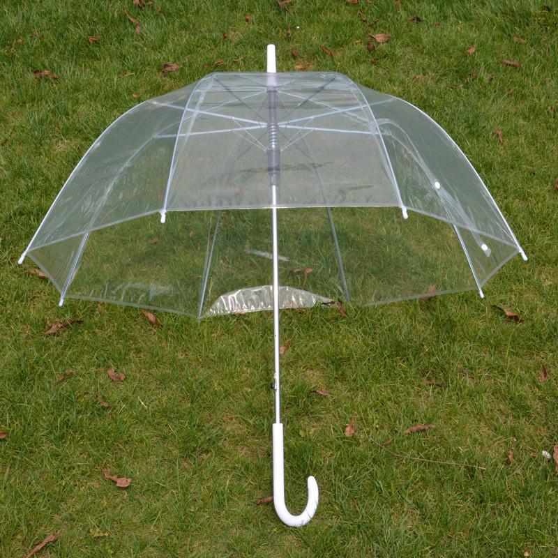 Apollo Transparent Umbrella Girl Windproof bubble Umbrellas Clear Princess  Mushrom automatic rain Umbrella Wedding Party Decor sale A42302