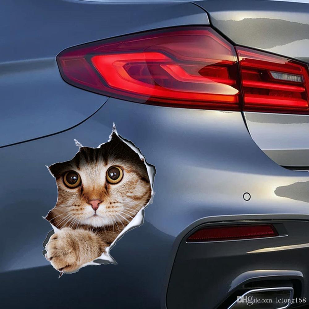Sticker Car 3D