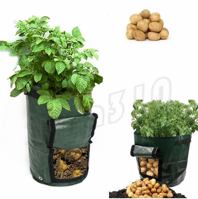 acheter nouveau mobile grow planter sac pomme de terre culture plantation jardin pots de fraise. Black Bedroom Furniture Sets. Home Design Ideas