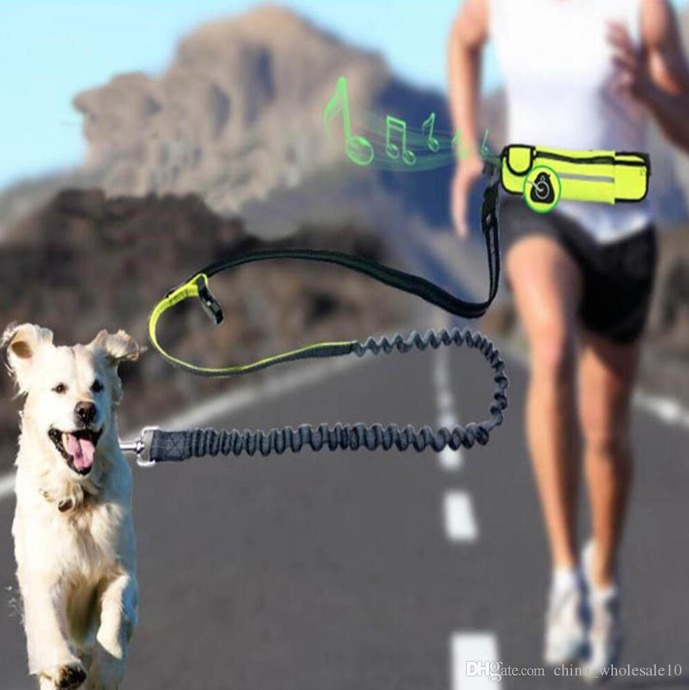 Hands Free Elastic Dog Leash Adjustable Padded Waist Reflective Running Jogging Walking Pet Lead Belt With Pouch Bags
