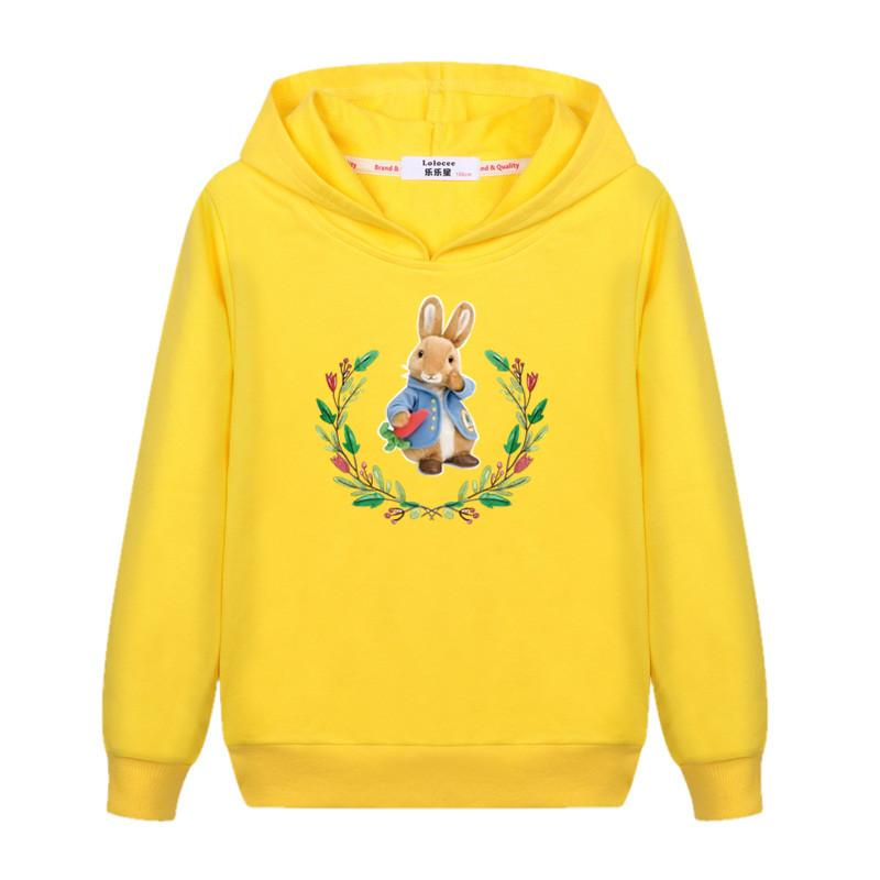 2018 Cartoon Peter Rabbit Sweater baby girl's Cute cotton casual hoodie Kids Fashion autumn winter clothes boys child 3-14T coat