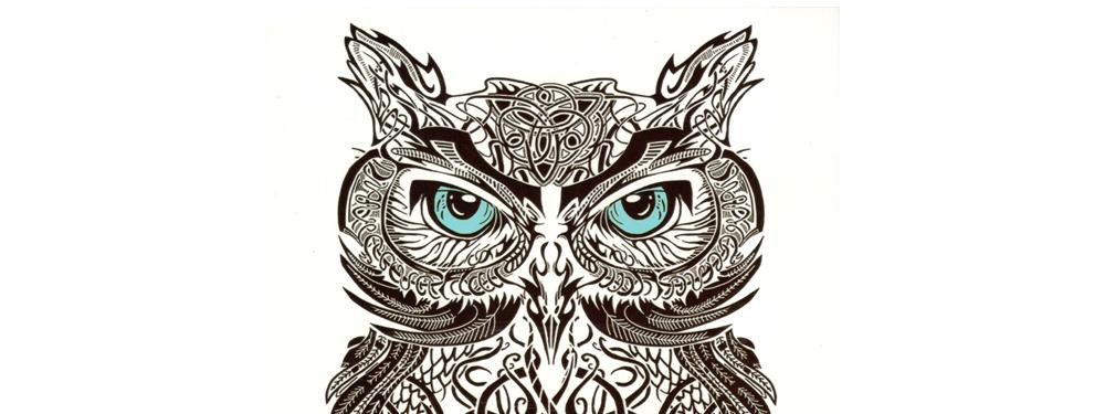Fake Temporary tattoo Water Transfer Black Bird blue eyes owl Stickers Women Men Sexy Cool Beauty Body Art live of song HB532