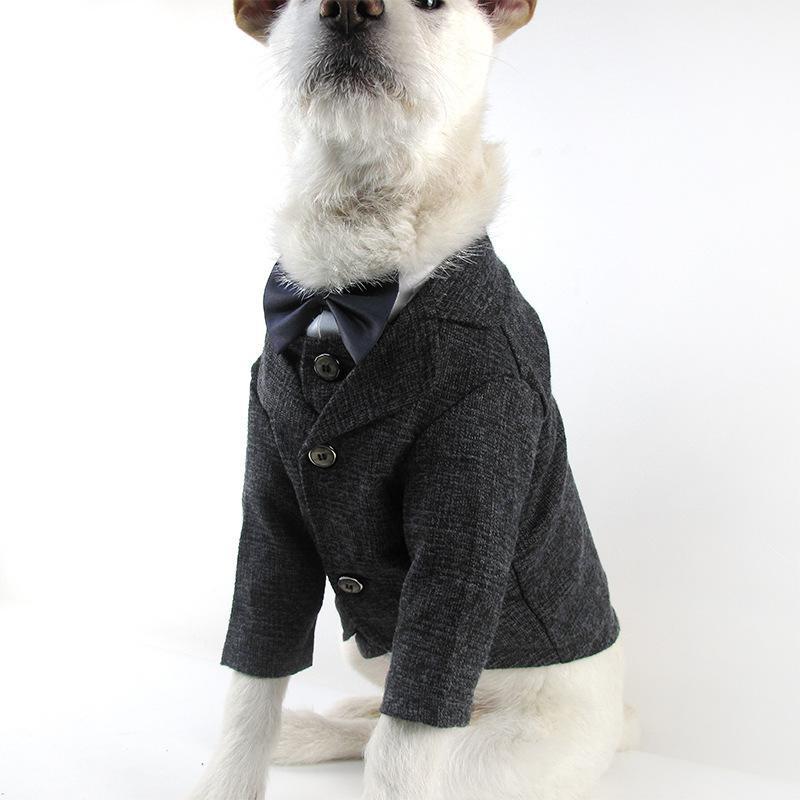 Compre Ropa Para Mascotas Perros Traje Chaleco Para Perros Gatos ...