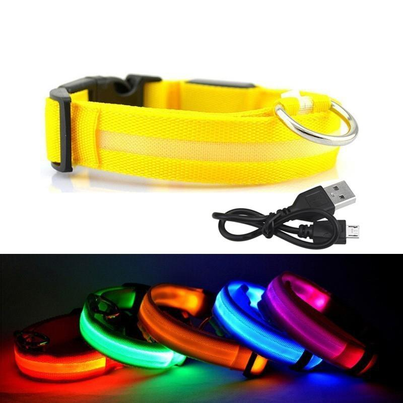 USB Chargeable Pet Dog Collar Nylon Lighting Night Safety Warning Anti-lost LED Glowing Collar Leash S M L XL HHA974