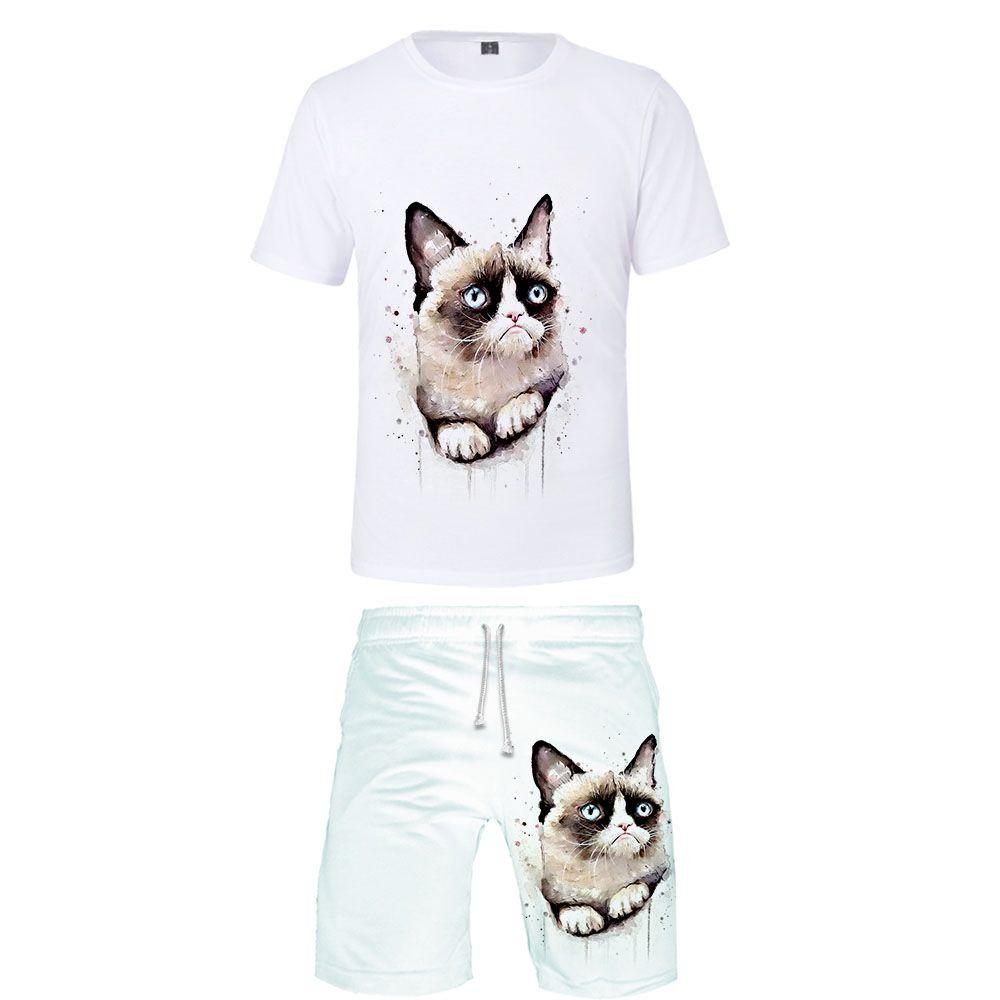 Grumpy Cat 3D print Personality man kpop Fashion cool high Street casual  Basic 2 Pic Set Summer T-shirt Short Pants Sets Sports