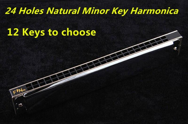 Swan 24 Holes Harmonica Tremolo Key of C Mouth Ogan Instrument Professional Playing Folk Harmonica Armonica 24 Hole Harmonica