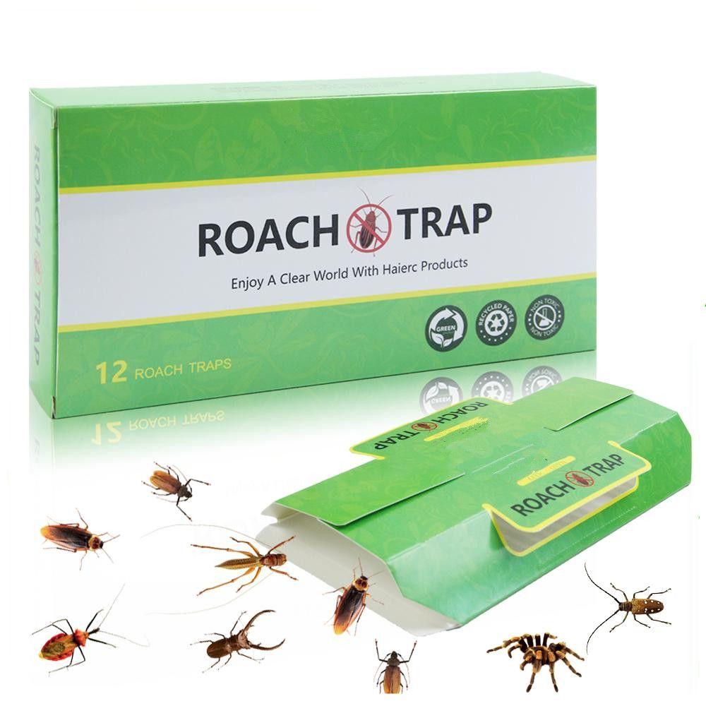 Pest Control Moth Traps