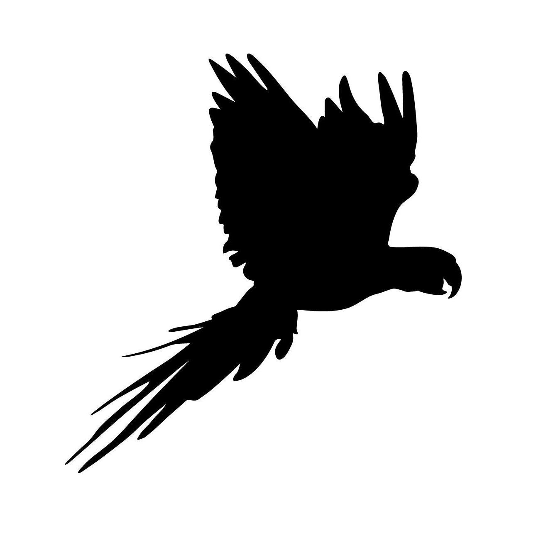 2019 bird decal window bumper sticker car decor pet parrot vinyl hobby car bumper sticker from xymy797 3 32 dhgate com