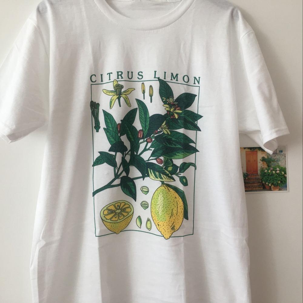 2bce877b1af Hahayule Jbh Print T Shirt Fashion Short Sleeve Limon Lemon The ...