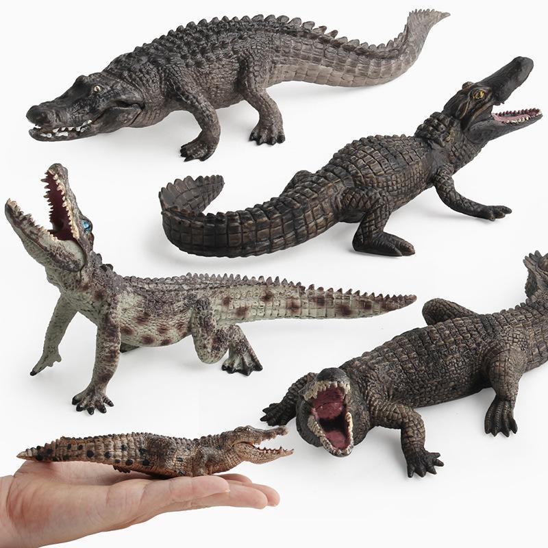 Compre Crocodilo Figura Modelo Brinquedos Realista Figura De Ação Estatueta  Crocodilo Simulação Selvagem Rio Animal Modelo De Brinquedo DHYT8547 De ... 7f5f65d22a