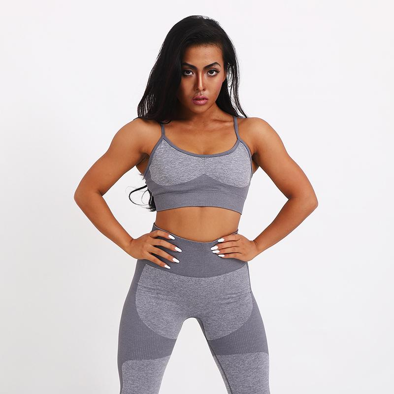 Yoga Outfit Gym Clothing for Women Sport Suit Women Yoga Set Exercise 2 Piece Set Compression Pants Fitness