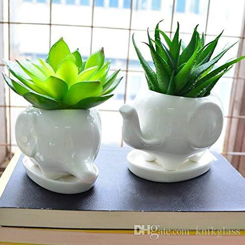 DHgate.com & Set of Two Elephant Ceramic Planters Elephant pot Nursery PotFlower Pot Succulent Planters