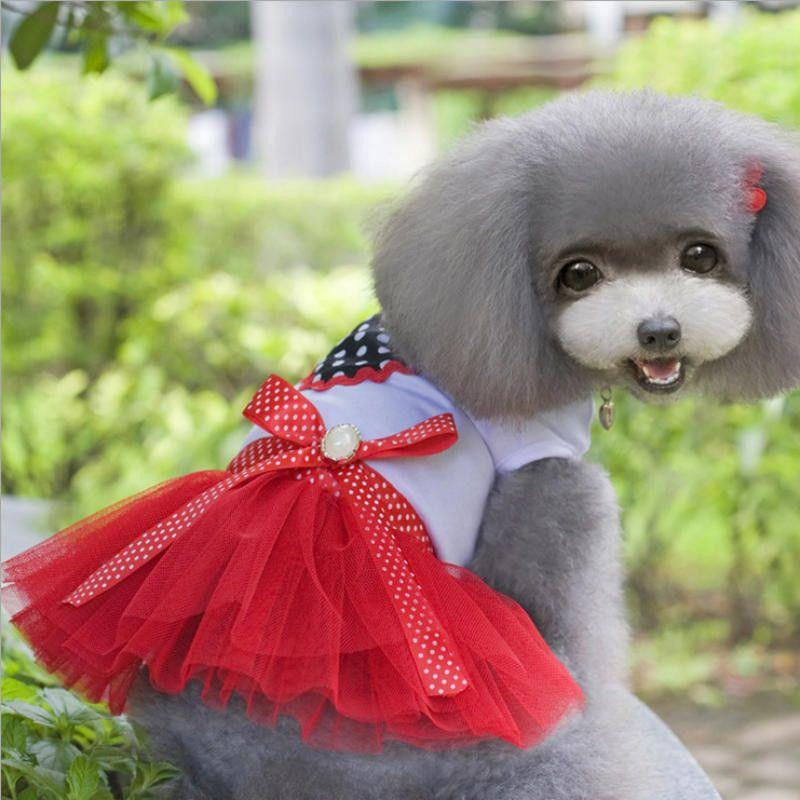 dd76bee41 Compre Ropa Para Perros Para Perros Pequeños Vestido Primavera Verano  Cachorro Perro Pequeño Encaje Princesa Chihuahua Mascotas Roupa Mascota  Cachorro A ...