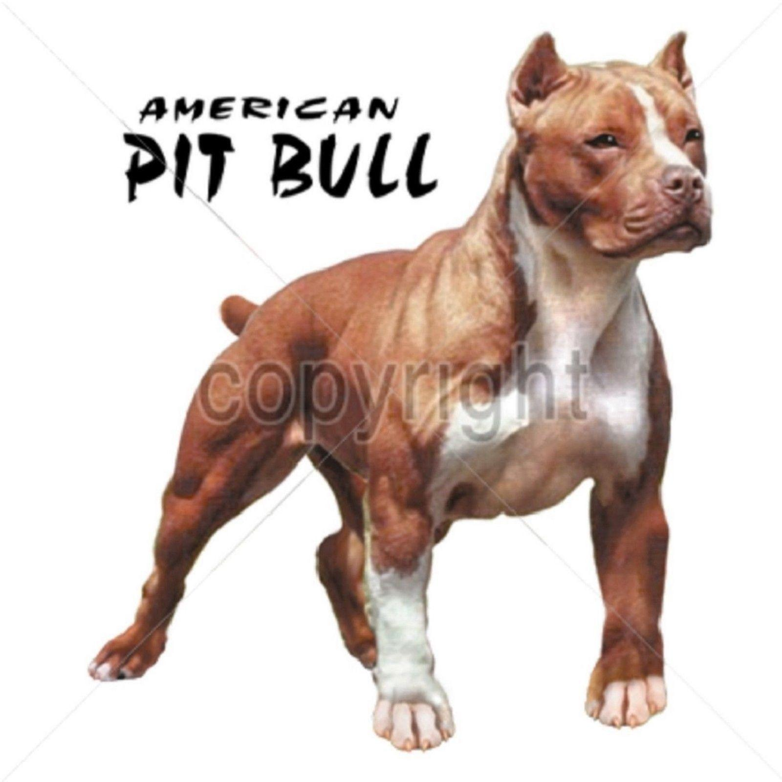 American Pit Bull Size 2 X Large-7 X Large Tank Tops suit hat pink t-shirt