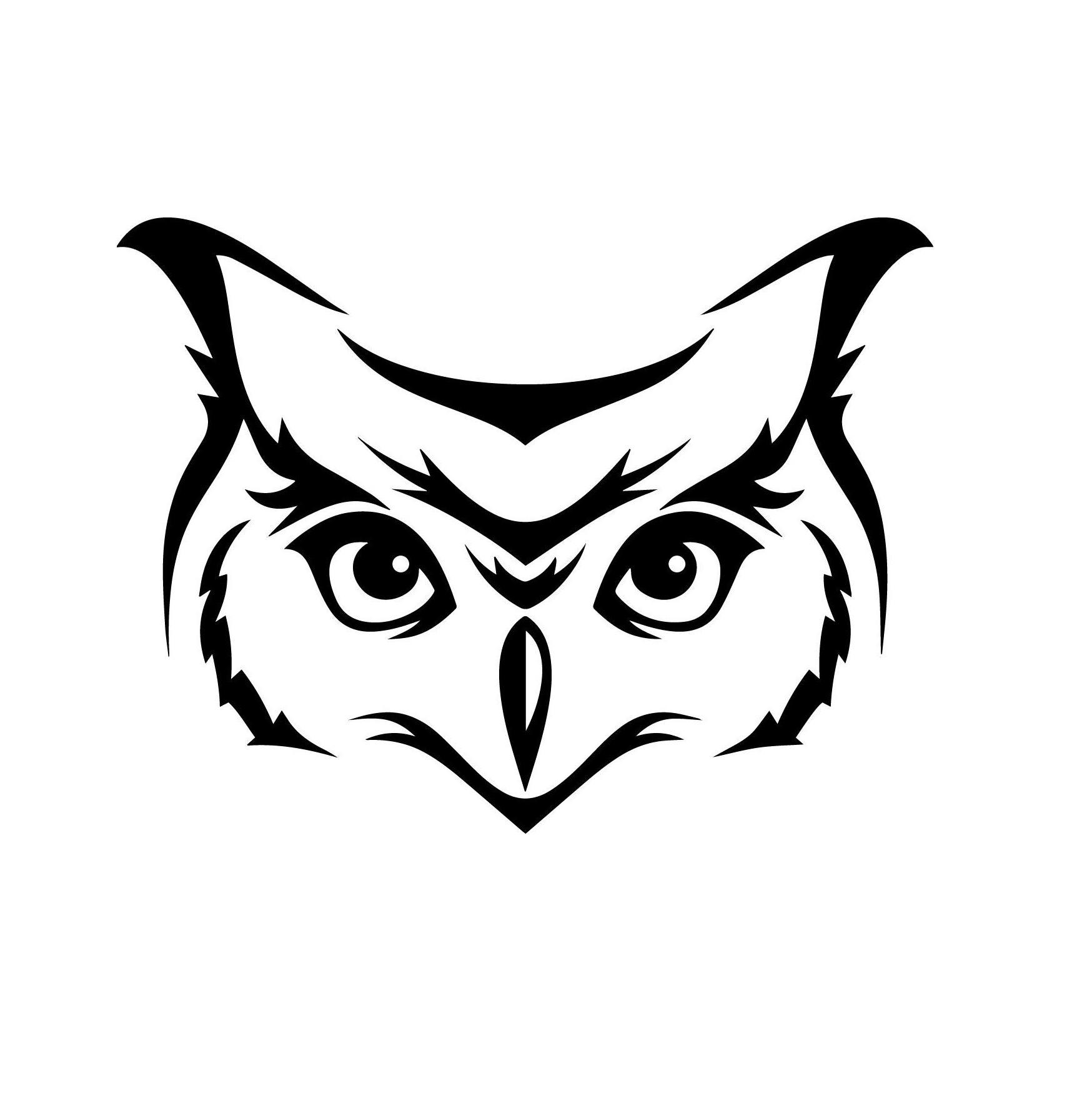 Kumpulan Sketsa Gambar Owl Face Sketsa Gambar