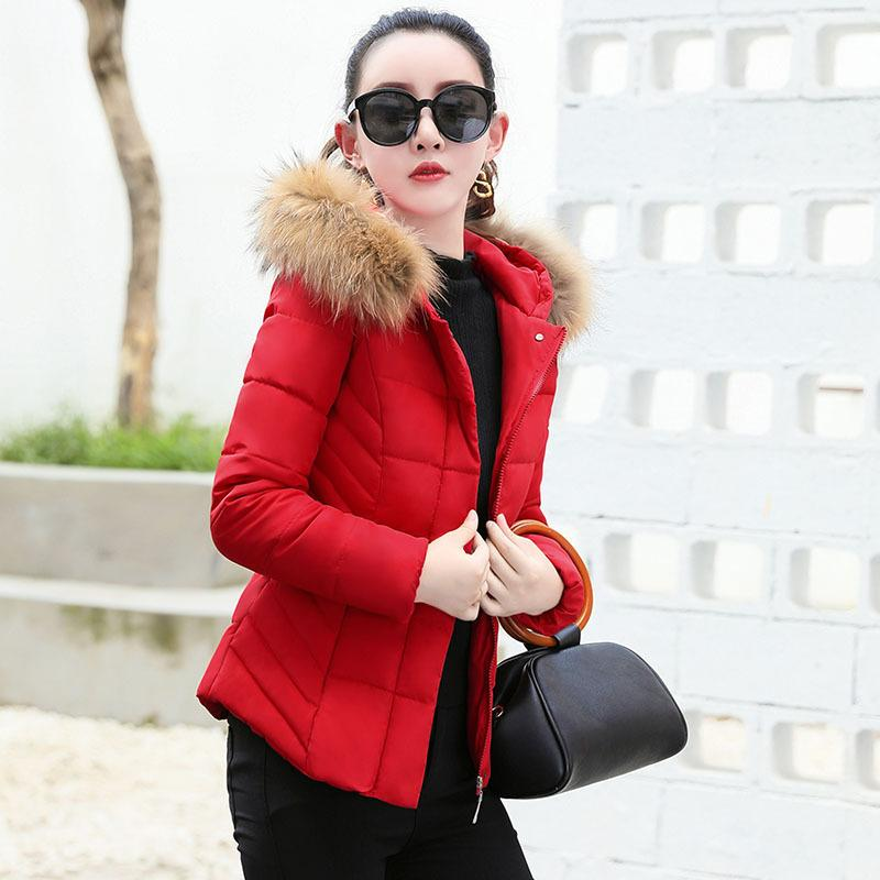 WOMEN'S Cotton-padded Clothing Short Middle-aged Women Dress 2019 Winter Models Versatile Korean-style down Jacket Cotton-padded