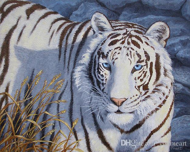 Artwork-white-tiger-crystal-eyes-Unframed Modern Canvas Wall Art per la decorazione di casa e ufficio, pittura a olio, pitture animali, cornice.