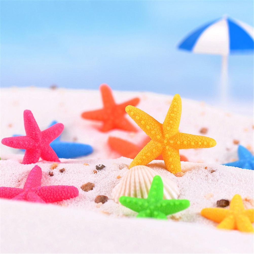 6pcs / lot diy klassische natürliche kleine starfish shell treiben flasche zubehör mini seestern natürliche handwerk
