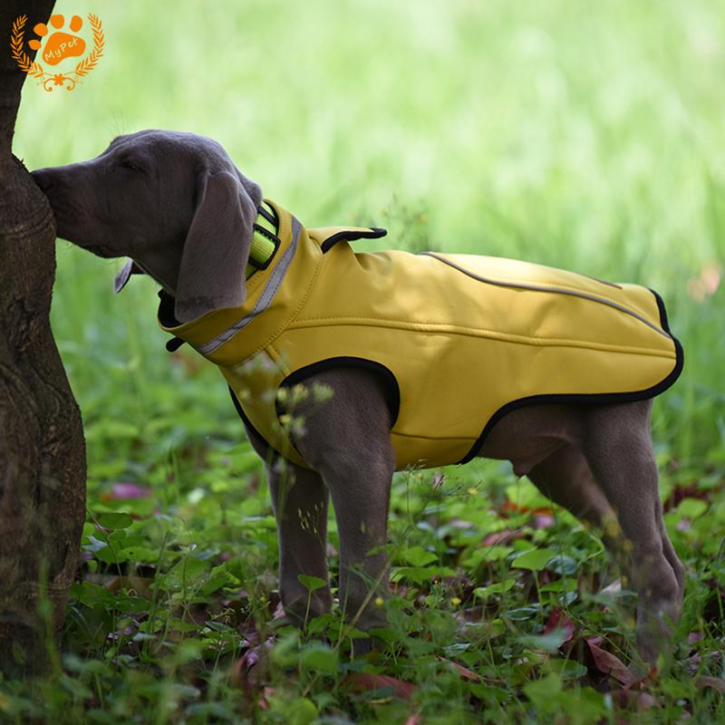 Weimaraner Breed Cat Dog T shirt S-3XL Clothes Pet Animal