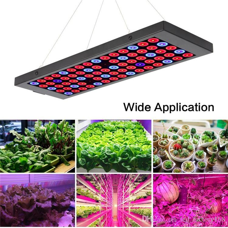 Newest Ultrathin LED Grow Lights Red Blue Spectrum 40W 75 LEDs Plant Light Hang Lamp Super Bright Indoor Greenhouse Hydroponic Aquatic Plant