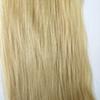 613#/Bleach Blonde