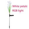RGB 빛 흰색 꽃잎