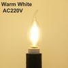 Warm White No Dimming AC220V