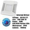 Driver interno 60W
