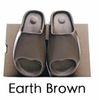지구 브라운