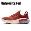 Universidad Red
