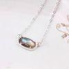 Gümüş Abalone