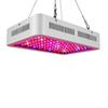 LED Grow Light 1000W Full Spectrum Led Grow Tent Covered Greenhouses Lamp Plant Grow Lamp for Veg Flowering