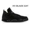 # 3 chat noir