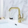 Brushed Gold and Black Brass Bathroom Basin Faucet Rotatable Water Mixer Tap Single Holder Deck Mounted