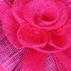 rosa caliente