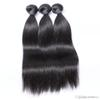 3 Bundles Silky Straight Brazilian Virgin Hair Extensions with Closure 10A Unprocessed Virgin Human Hair Weave Weft Wholesale