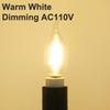 Bianco caldo oscuramento AC110V