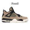 Fossi1