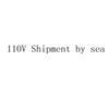 110V Shipment by sea