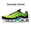 Schrei grün