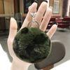 الأخضر الفهد الكرة الفراء