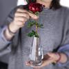 Красный цветок с вазой