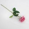 Profunda rosa rosa