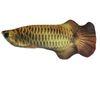 Golden Dragon Fisch USB Charging