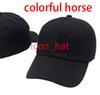 Renkli at ile siyah