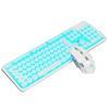 Bianco N Blue LED retroilluminato